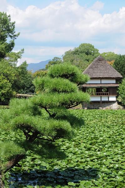 旧津山藩別邸庭園(衆楽園)」として国の名勝に指定