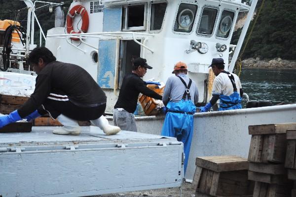 温泉津温泉 温泉津港 漁師