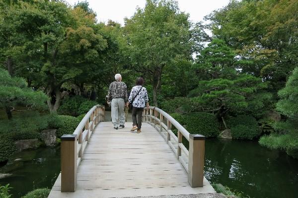 由志園は山陰一の規模を誇る回遊式庭園。牡丹の花が有名