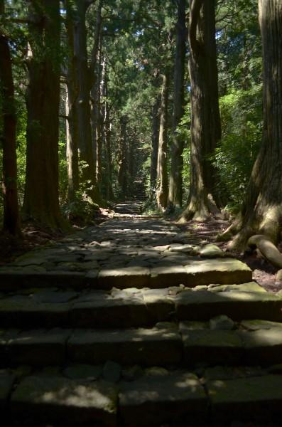 那智勝浦 日本三大古道 熊野古道を通る大門坂