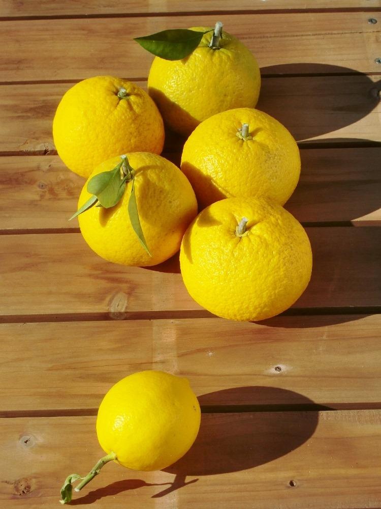 150107amanatu&lemon2