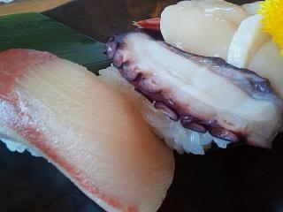 20141231魚神(その8)