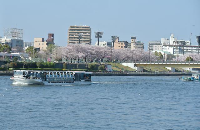 DSC_2572隅田公園