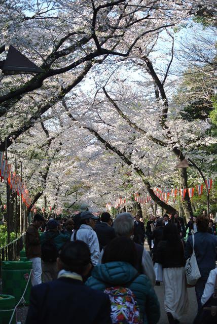 DSC_2582_2上野公園