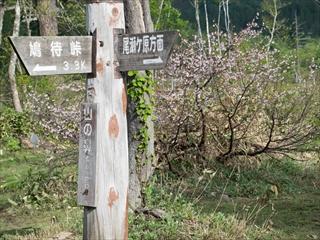 2015-6-10 尾瀬ヶ原14 (1 - 1DSC_0015)_R