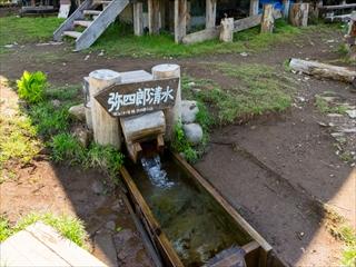2015-6-10 尾瀬ヶ原35 (1 - 1DSC_0061)_R