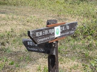 2015-6-10 尾瀬ヶ原42 (1 - 1DSC_0069)_R