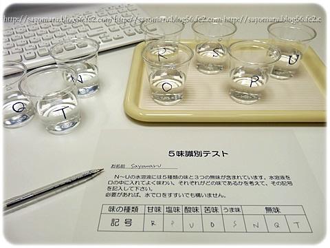 sayomaru13-801.jpg