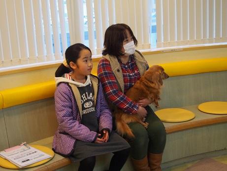 松永さん老犬4