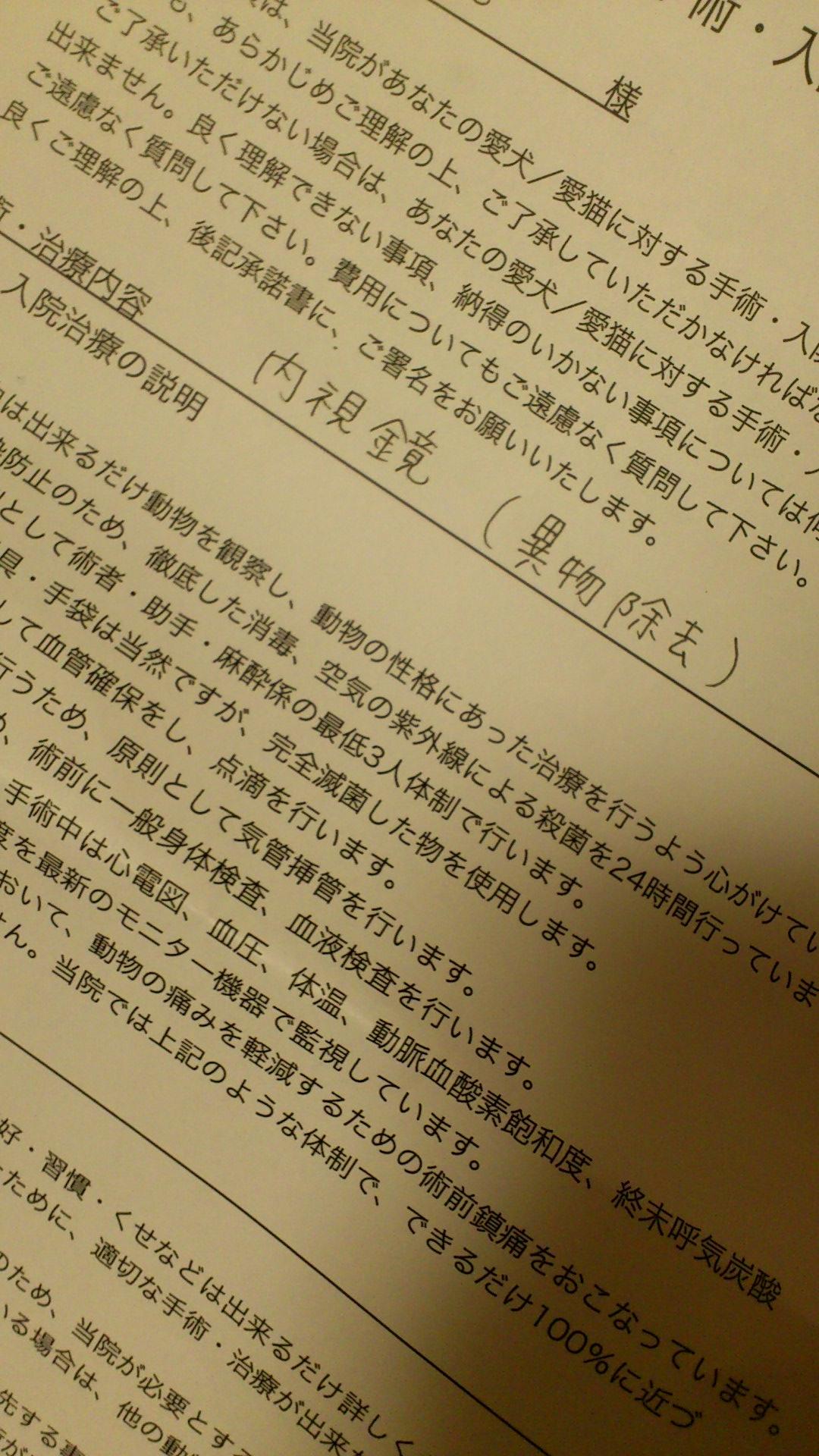 DSC_2562.jpg