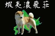 ezo_st.jpg