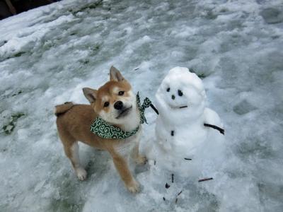 雪ダルマとハナ