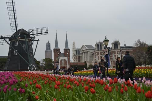 風車&お花