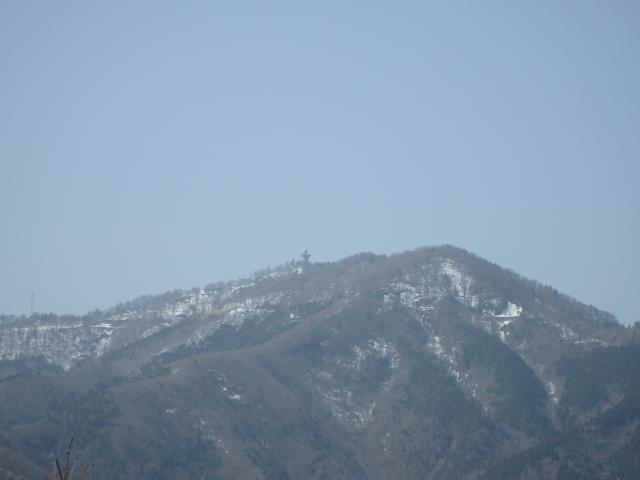 こちらは高城山の山頂付近