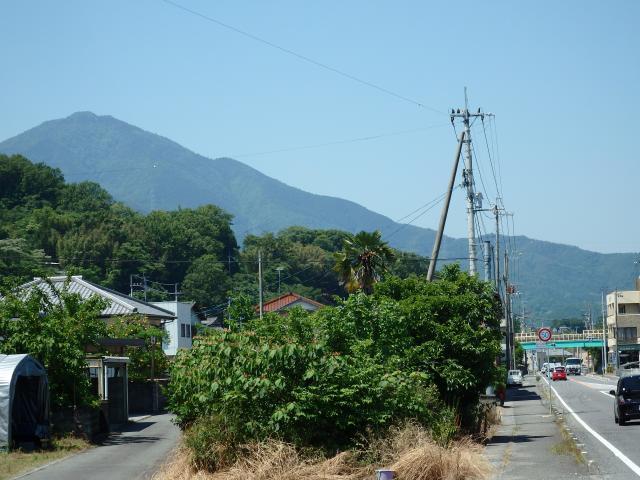 県道から高越山を見上げる