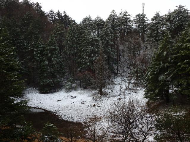夫婦池も薄らと雪がある