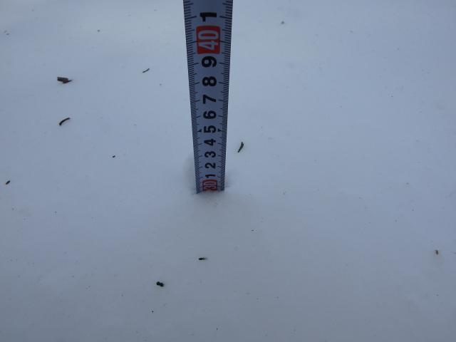 深いところは30センチの積雪深