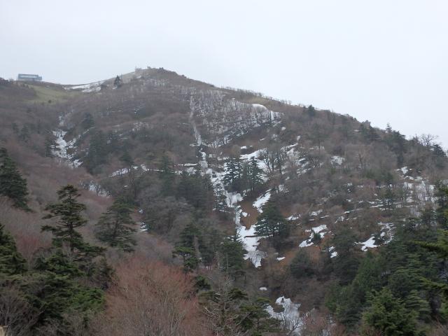 剣山山頂直下の北斜面