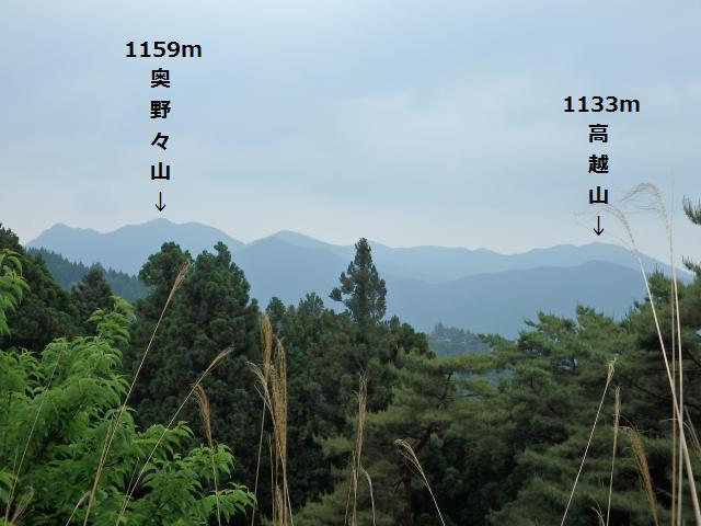 林道から奥野々山を望む