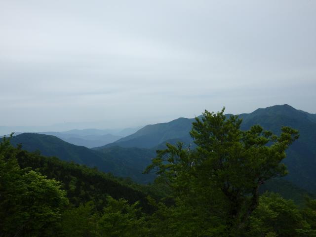 雲早山の左に淡路島が見える筈