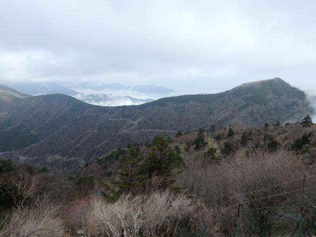 丸笹山方向 (北~北北西) を眺める
