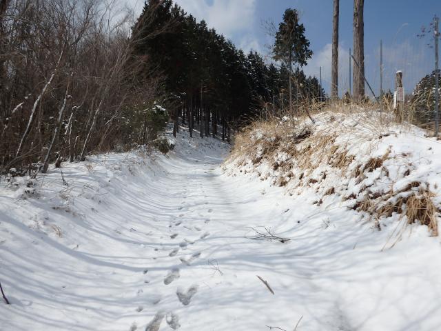 高越寺へ行く林道(参詣路)の入り口