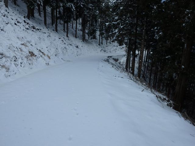 尾根の東側で雪が多い