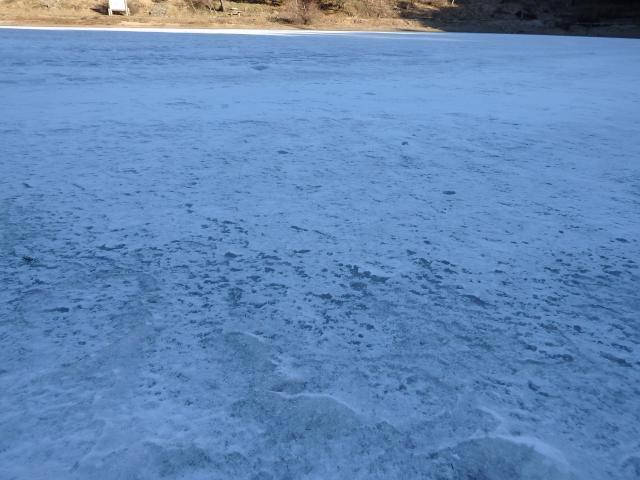 氷は厚そうだが立ち入り厳禁