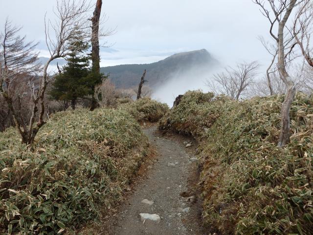 登山道には雪がない