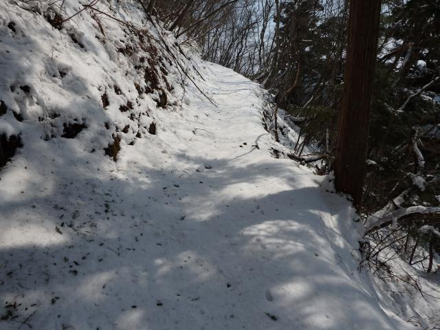 雪が積もる