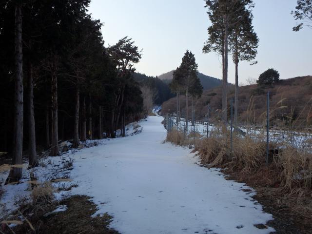 寺の駐車場へ至る林道