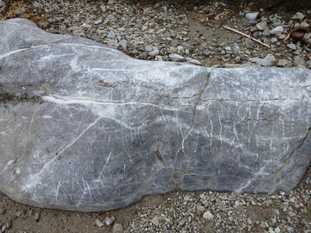 登山道には石灰岩がごろごろ