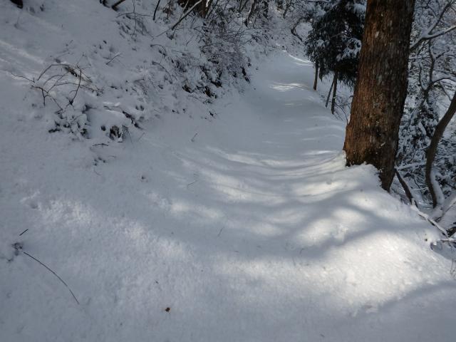 積雪が多い