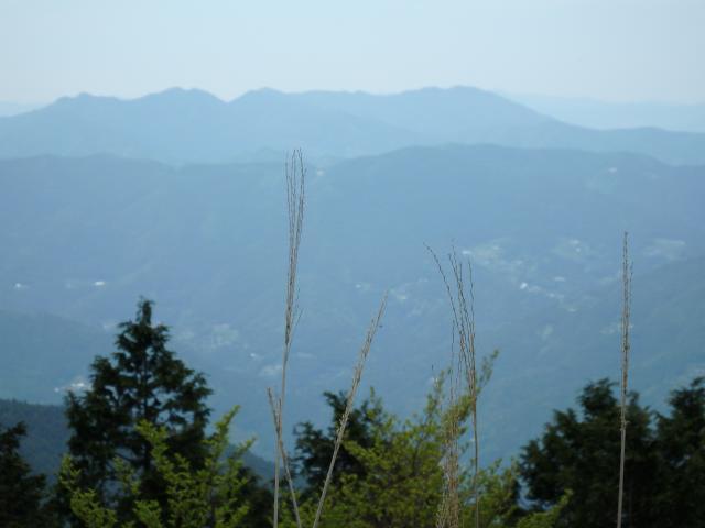 高越山も見える