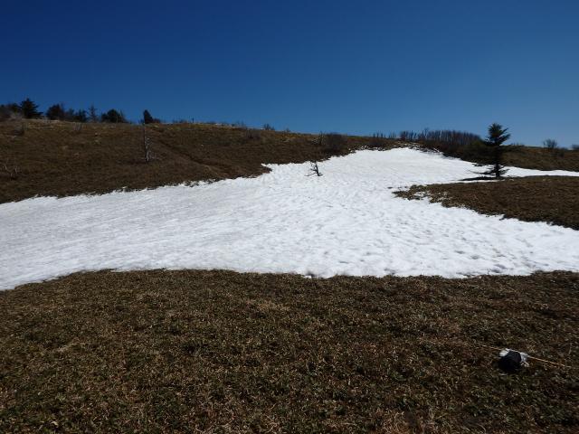 雪渓みたい