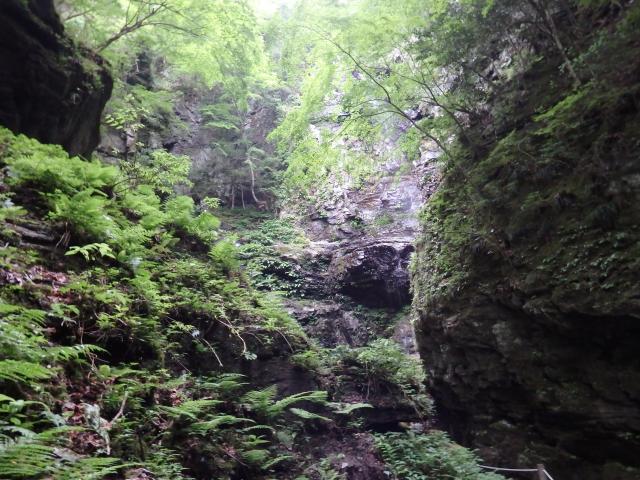 深山幽谷の雰囲気が漂う