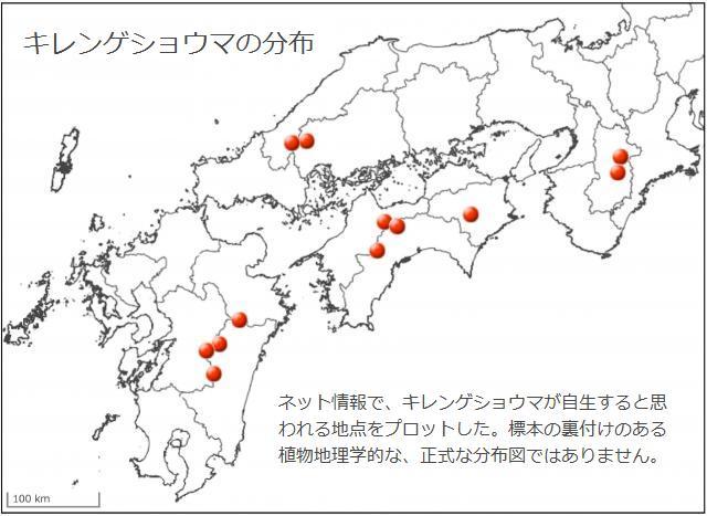 キレンゲショウマの分布