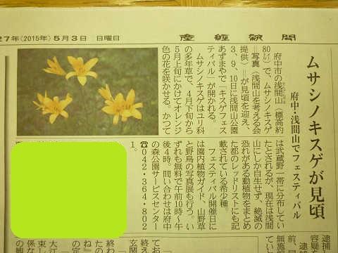 ムサシノキスゲ 見頃 5月 産経新聞