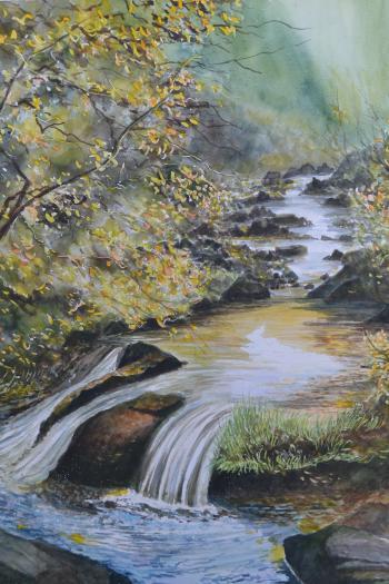 Web槻川の流れ