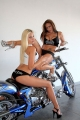 big_sexy_bikers_chopper01_d.jpg
