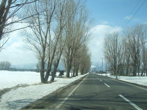 残雪の景色
