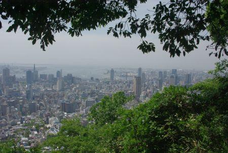 150517-再度公園から六甲森林植物園1