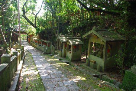 150517-再度公園から六甲森林植物園4