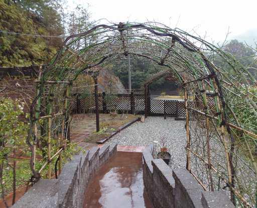 20150222 雨のガーデン