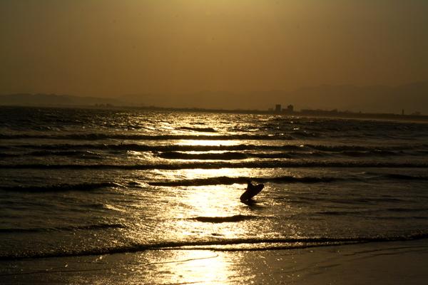 海に入るサーファー