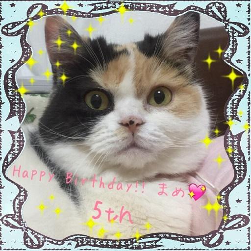 5さい誕生日まめ