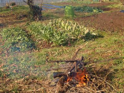 12.28畑で焚火