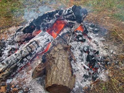 12.28究極の焚火