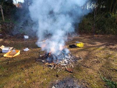 12.28前の土地焚火