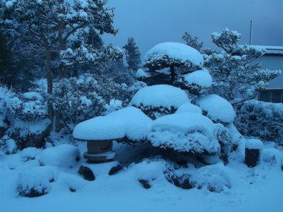 1.1庭の雪